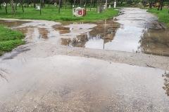 Regen_1